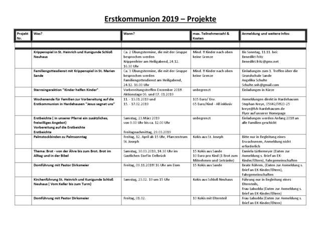 thumbnail of Projektliste 2018-2019